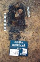 Chronicle of the Archaeological Excavations in Romania, 2001 Campaign. Report no. 181, Roşia Montană, Cârnic (Piatra Corbului).<br /> Sector Imagini_detaliu_necropola.<br /><a href='http://foto.cimec.ro/cronica/2001/181/Imagini-detaliu-necropola/059.JPG' target=_blank>Display the same picture in a new window</a>