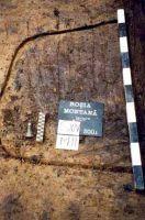 Chronicle of the Archaeological Excavations in Romania, 2001 Campaign. Report no. 181, Roşia Montană, Cârnic (Piatra Corbului).<br /> Sector Imagini_detaliu_necropola.<br /><a href='http://foto.cimec.ro/cronica/2001/181/Imagini-detaliu-necropola/064.JPG' target=_blank>Display the same picture in a new window</a>