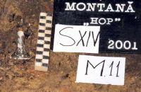 Chronicle of the Archaeological Excavations in Romania, 2001 Campaign. Report no. 181, Roşia Montană, Cârnic (Piatra Corbului).<br /> Sector Imagini_detaliu_necropola.<br /><a href='http://foto.cimec.ro/cronica/2001/181/Imagini-detaliu-necropola/065.JPG' target=_blank>Display the same picture in a new window</a>