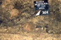 Chronicle of the Archaeological Excavations in Romania, 2001 Campaign. Report no. 181, Roşia Montană, Cârnic (Piatra Corbului).<br /> Sector Imagini_detaliu_necropola.<br /><a href='http://foto.cimec.ro/cronica/2001/181/Imagini-detaliu-necropola/090.JPG' target=_blank>Display the same picture in a new window</a>