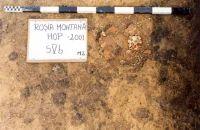 Chronicle of the Archaeological Excavations in Romania, 2001 Campaign. Report no. 181, Roşia Montană, Cârnic (Piatra Corbului).<br /> Sector Imagini_detaliu_necropola.<br /><a href='http://foto.cimec.ro/cronica/2001/181/Imagini-detaliu-necropola/106.JPG' target=_blank>Display the same picture in a new window</a>