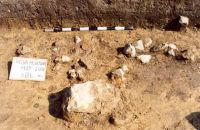 Chronicle of the Archaeological Excavations in Romania, 2001 Campaign. Report no. 181, Roşia Montană, Cârnic (Piatra Corbului).<br /> Sector Imagini_detaliu_necropola.<br /><a href='http://foto.cimec.ro/cronica/2001/181/Imagini-detaliu-necropola/109.JPG' target=_blank>Display the same picture in a new window</a>