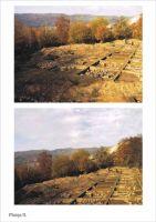 Cronica Cercetărilor Arheologice din România, Campania 2001. Raportul nr. 186, Roşia Montană, Hăbad-Brădoaia<br /><a href='http://foto.cimec.ro/cronica/2001/186/planse-rosia02.jpg' target=_blank>Priveşte aceeaşi imagine într-o fereastră nouă</a>