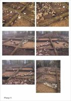 Chronicle of the Archaeological Excavations in Romania, 2001 Campaign. Report no. 186, Roşia Montană, Balmoşeşti - Gura Minei<br /><a href='http://foto.cimec.ro/cronica/2001/186/planse-rosia05.jpg' target=_blank>Display the same picture in a new window</a>
