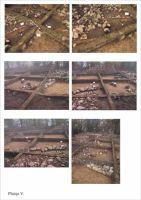Cronica Cercetărilor Arheologice din România, Campania 2001. Raportul nr. 186, Roşia Montană, Hăbad-Brădoaia<br /><a href='http://foto.cimec.ro/cronica/2001/186/planse-rosia05.jpg' target=_blank>Priveşte aceeaşi imagine într-o fereastră nouă</a>