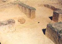 Chronicle of the Archaeological Excavations in Romania, 2001 Campaign. Report no. 237, Vârtopu, Vârtoapele<br /><a href='http://foto.cimec.ro/cronica/2001/237/vartopu-ciuperceni1.jpg' target=_blank>Display the same picture in a new window</a>