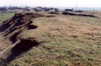 Chronicle of the Archaeological Excavations in Romania, 2001 Campaign. Report no. 248, Zimnicea, Câmpul Morţilor<br /><a href='http://foto.cimec.ro/cronica/2001/248/010.jpg' target=_blank>Display the same picture in a new window</a>
