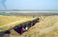 Chronicle of the Archaeological Excavations in Romania, 2001 Campaign. Report no. 248, Zimnicea, Câmpul Morţilor<br /><a href='http://foto.cimec.ro/cronica/2001/248/017.jpg' target=_blank>Display the same picture in a new window</a>