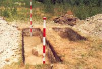 Chronicle of the Archaeological Excavations in Romania, 2002 Campaign. Report no. 2, Gura Cornei, Valea Seliştei.<br /> Sector foto.<br /><a href='http://foto.cimec.ro/cronica/2002/002/foto/09-pl-ix-6.jpg' target=_blank>Display the same picture in a new window</a>