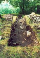 Chronicle of the Archaeological Excavations in Romania, 2002 Campaign. Report no. 2, Gura Cornei, Valea Seliştei.<br /> Sector foto.<br /><a href='http://foto.cimec.ro/cronica/2002/002/foto/14-pl-xiv-16.jpg' target=_blank>Display the same picture in a new window</a>