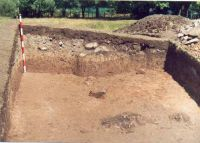Chronicle of the Archaeological Excavations in Romania, 2002 Campaign. Report no. 2, Gura Cornei, Valea Seliştei.<br /> Sector foto.<br /><a href='http://foto.cimec.ro/cronica/2002/002/foto/25-pl-xxv-38.jpg' target=_blank>Display the same picture in a new window</a>