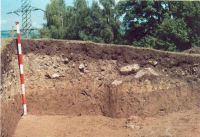 Chronicle of the Archaeological Excavations in Romania, 2002 Campaign. Report no. 2, Gura Cornei, Valea Seliştei.<br /> Sector foto.<br /><a href='http://foto.cimec.ro/cronica/2002/002/foto/26-pl-xxvi-39.jpg' target=_blank>Display the same picture in a new window</a>
