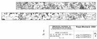 Cronica Cercetărilor Arheologice din România, Campania 2002. Raportul nr. 2, Gura Cornei, Valea Seliştei.<br /> Sectorul planuri.<br /><a href='http://foto.cimec.ro/cronica/2002/002/planuri/02.jpg' target=_blank>Priveşte aceeaşi imagine într-o fereastră nouă</a>