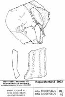 Cronica Cercetărilor Arheologice din România, Campania 2002. Raportul nr. 2, Abrud, Valea Seliştei (Seliştei Valley).<br /> Sectorul planuri.<br /><a href='http://foto.cimec.ro/cronica/2002/002/planuri/10.jpg' target=_blank>Priveşte aceeaşi imagine într-o fereastră nouă</a>