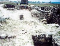Chronicle of the Archaeological Excavations in Romania, 2002 Campaign. Report no. 5, Adamclisi, Cetate.<br /> Sector sectorD.<br /><a href='http://foto.cimec.ro/cronica/2002/005/adamclisi-basilica-d.jpg' target=_blank>Display the same picture in a new window</a>