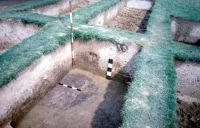 Chronicle of the Archaeological Excavations in Romania, 2002 Campaign. Report no. 6, Adâncata, Dealul Lipovanului.<br /> Sector movilaT3.<br /><a href='http://foto.cimec.ro/cronica/2002/006/movilaT3/l.jpg' target=_blank>Display the same picture in a new window</a>