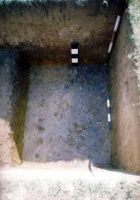 Chronicle of the Archaeological Excavations in Romania, 2002 Campaign. Report no. 6, Adâncata, Dealul Lipovanului.<br /> Sector movilaT4.<br /><a href='http://foto.cimec.ro/cronica/2002/006/movilaT4/Pict0017.jpg' target=_blank>Display the same picture in a new window</a>