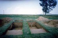 Chronicle of the Archaeological Excavations in Romania, 2002 Campaign. Report no. 6, Adâncata, Dealul Lipovanului.<br /> Sector movilaT5.<br /><a href='http://foto.cimec.ro/cronica/2002/006/movilaT5/a1.jpg' target=_blank>Display the same picture in a new window</a>