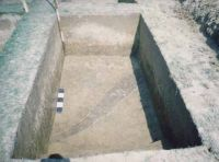 Chronicle of the Archaeological Excavations in Romania, 2002 Campaign. Report no. 6, Adâncata, Dealul Lipovanului.<br /> Sector movilaT5.<br /><a href='http://foto.cimec.ro/cronica/2002/006/movilaT5/c5.jpg' target=_blank>Display the same picture in a new window</a>
