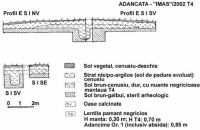Chronicle of the Archaeological Excavations in Romania, 2002 Campaign. Report no. 6, Adâncata, Dealul Lipovanului.<br /> Sector T8 2003.<br /><a href='http://foto.cimec.ro/cronica/2002/006/08.jpg' target=_blank>Display the same picture in a new window</a>