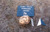 Chronicle of the Archaeological Excavations in Romania, 2002 Campaign. Report no. 11, Alba Iulia, Apulum II - Profi<br /><a href='http://foto.cimec.ro/cronica/2002/011/2.jpg' target=_blank>Display the same picture in a new window</a>