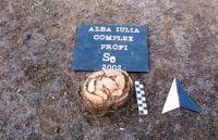 Cronica Cercetărilor Arheologice din România, Campania 2002. Raportul nr. 11, Alba Iulia, Apulum II - Profi<br /><a href='http://foto.cimec.ro/cronica/2002/011/2.jpg' target=_blank>Priveşte aceeaşi imagine într-o fereastră nouă</a>
