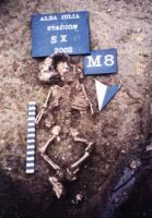 Chronicle of the Archaeological Excavations in Romania, 2002 Campaign. Report no. 12, Alba Iulia, Staţia de carburanţi OMV<br /><a href='http://foto.cimec.ro/cronica/2002/012/fig4.jpg' target=_blank>Display the same picture in a new window</a>