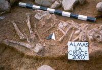 Cronica Cercetărilor Arheologice din România, Campania 2002. Raportul nr. 15, Almaşu Mare, La Cruce<br /><a href='http://foto.cimec.ro/cronica/2002/015/fig-2.jpg' target=_blank>Priveşte aceeaşi imagine într-o fereastră nouă</a>