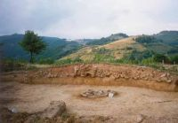 Cronica Cercetărilor Arheologice din România, Campania 2002. Raportul nr. 15, Almaşu Mare, La Cruce<br /><a href='http://foto.cimec.ro/cronica/2002/015/fig1.jpg' target=_blank>Priveşte aceeaşi imagine într-o fereastră nouă</a>