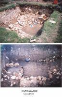 Chronicle of the Archaeological Excavations in Romania, 2002 Campaign. Report no. 42, Capidava, Cetate.<br /> Sector 06-ilustratie sector X.<br /><a href='http://foto.cimec.ro/cronica/2002/042/grupaj2.jpg' target=_blank>Display the same picture in a new window</a>