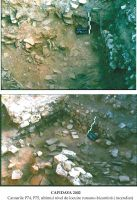 Chronicle of the Archaeological Excavations in Romania, 2002 Campaign. Report no. 42, Capidava, Cetate.<br /> Sector 06-ilustratie sector X.<br /><a href='http://foto.cimec.ro/cronica/2002/042/grupaj3.jpg' target=_blank>Display the same picture in a new window</a>