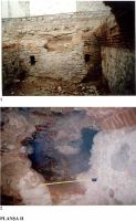 Chronicle of the Archaeological Excavations in Romania, 2002 Campaign. Report no. 47, Câmpina<br /><a href='http://foto.cimec.ro/cronica/2002/047/02.jpg' target=_blank>Display the same picture in a new window</a>