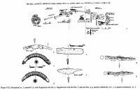 Cronica Cercetărilor Arheologice din România, Campania 2002. Raportul nr. 72, Desa, Castraviţa<br /><a href='http://foto.cimec.ro/cronica/2002/072/08.jpg' target=_blank>Priveşte aceeaşi imagine într-o fereastră nouă</a>
