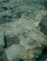 Cronica Cercetărilor Arheologice din România, Campania 2002. Raportul nr. 103, Istria, Cetate.<br /> Sectorul sectorMNIR.<br /><a href='http://foto.cimec.ro/cronica/2002/103/Scan1629.jpg' target=_blank>Priveşte aceeaşi imagine într-o fereastră nouă</a>