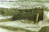 Chronicle of the Archaeological Excavations in Romania, 2002 Campaign. Report no. 104, Însurăţei, Popina B (Popina II, Ruptă)<br /><a href='http://foto.cimec.ro/cronica/2002/104/ins-p1-l6-04.jpg' target=_blank>Display the same picture in a new window</a>