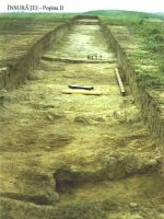 Chronicle of the Archaeological Excavations in Romania, 2002 Campaign. Report no. 104, Însurăţei, Popina B (Popina II, Ruptă)<br /><a href='http://foto.cimec.ro/cronica/2002/104/ins-p2-2002-s1-an.jpg' target=_blank>Display the same picture in a new window</a>