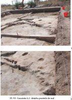 Cronica Cercetărilor Arheologice din România, Campania 2002. Raportul nr. 126, Năvodari, La Ostrov (Lacul Taşaul)<br /><a href='http://foto.cimec.ro/cronica/2002/126/PLVILI.jpg' target=_blank>Priveşte aceeaşi imagine într-o fereastră nouă</a>