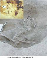 Cronica Cercetărilor Arheologice din România, Campania 2002. Raportul nr. 126, Năvodari, La Ostrov (Lacul Taşaul)<br /><a href='http://foto.cimec.ro/cronica/2002/126/pl-xim2.jpg' target=_blank>Priveşte aceeaşi imagine într-o fereastră nouă</a>