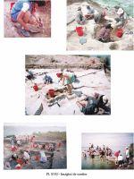Cronica Cercetărilor Arheologice din România, Campania 2002. Raportul nr. 126, Năvodari, La Ostrov (Lacul Taşaul)<br /><a href='http://foto.cimec.ro/cronica/2002/126/pl-xviimagsantier.jpg' target=_blank>Priveşte aceeaşi imagine într-o fereastră nouă</a>