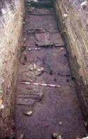 Cronica Cercetărilor Arheologice din România, Campania 2002. Raportul nr. 128, Nufăru, I. Rubanschi<br /><a href='http://foto.cimec.ro/cronica/2002/128/pl-3.jpg' target=_blank>Priveşte aceeaşi imagine într-o fereastră nouă</a>