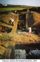 Chronicle of the Archaeological Excavations in Romania, 2002 Campaign. Report no. 140, Pâncota, Totani<br /><a href='http://foto.cimec.ro/cronica/2002/140/d2.jpg' target=_blank>Display the same picture in a new window</a>