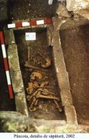 Chronicle of the Archaeological Excavations in Romania, 2002 Campaign. Report no. 140, Pâncota, Totani<br /><a href='http://foto.cimec.ro/cronica/2002/140/d5.jpg' target=_blank>Display the same picture in a new window</a>
