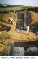 Chronicle of the Archaeological Excavations in Romania, 2002 Campaign. Report no. 140, Pâncota, Totani<br /><a href='http://foto.cimec.ro/cronica/2002/140/g.jpg' target=_blank>Display the same picture in a new window</a>