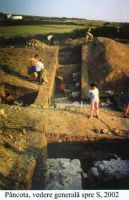 Chronicle of the Archaeological Excavations in Romania, 2002 Campaign. Report no. 140, Pâncota, Totani<br /><a href='http://foto.cimec.ro/cronica/2002/140/pancotavederegen.jpg' target=_blank>Display the same picture in a new window</a>