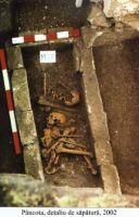 Cronica Cercetărilor Arheologice din România, Campania 2002. Raportul nr. 140, Pâncota, Totani<br /><a href='http://foto.cimec.ro/cronica/2002/140/d5.jpg' target=_blank>Priveşte aceeaşi imagine într-o fereastră nouă</a>