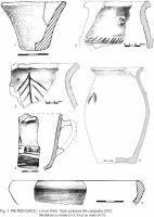 Cronica Cercetărilor Arheologice din România, Campania 2002. Raportul nr. 145, Pietroasa Mic&#259;, Gruiu D&#259;rii<br /><a href='http://foto.cimec.ro/cronica/2002/145/03.jpg' target=_blank>Priveşte aceeaşi imagine într-o fereastră nouă</a>