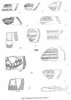 Cronica Cercetărilor Arheologice din România, Campania 2002. Raportul nr. 146, Pietroasele, SCV Pietroasa<br /><a href='http://foto.cimec.ro/cronica/2002/146/08.jpg' target=_blank>Priveşte aceeaşi imagine într-o fereastră nouă</a>