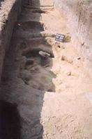 Cronica Cercetărilor Arheologice din România, Campania 2002. Raportul nr. 170, Satu Nou, Valea lui Voicu<br /><a href='http://foto.cimec.ro/cronica/2002/170/11.jpg' target=_blank>Priveşte aceeaşi imagine într-o fereastră nouă</a>