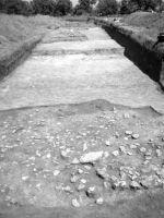 Cronica Cercetărilor Arheologice din România, Campania 2002. Raportul nr. 175, Scânteia, La Nuci (Dealul Bodeştilor)<br /><a href='http://foto.cimec.ro/cronica/2002/175/Scant2.jpg' target=_blank>Priveşte aceeaşi imagine într-o fereastră nouă</a>