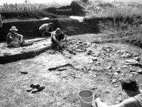 Cronica Cercetărilor Arheologice din România, Campania 2002. Raportul nr. 175, Scânteia, La Nuci (Dealul Bodeştilor)<br /><a href='http://foto.cimec.ro/cronica/2002/175/Scant3.jpg' target=_blank>Priveşte aceeaşi imagine într-o fereastră nouă</a>